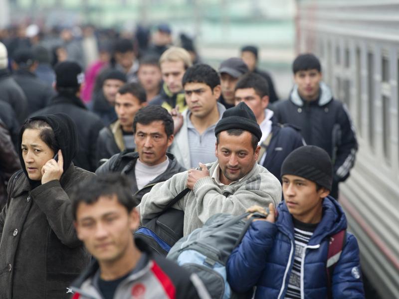 Хорижда қанча ўзбекистонлик мигрантлар ишлаётгани маълум қилинди