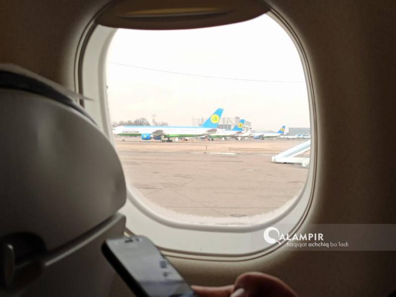 """""""Uzbekistan Airways""""ning narxlari xorijdagilardan 148 foizgacha yuqori – Senat"""
