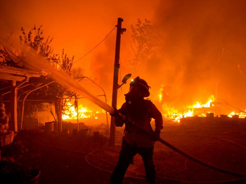 Мавсумий офат: Калифорния аланга ичида қолди (фото)