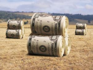 Туркияда 1 гектар ердан 2, Мисрда 8, Исроилда 12 минг долларлик маҳсулот олинади. Ўзбекистондачи?