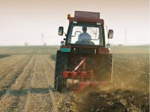 Ўзбекистонда тракторчилар етишмаётганлиги маълум қилинди