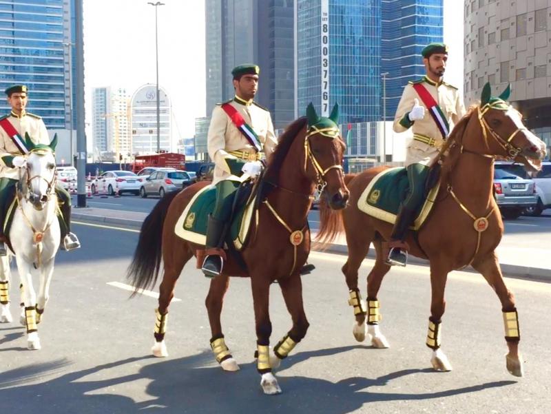 Дубайда коронавирусга қарши кураш якунланиши отлар паради билан нишонланди