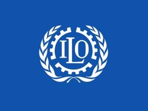 Ўзбекистон мажбурий меҳнат тўғрисидаги конвенцияга баённомани ратификация қилмоқчи