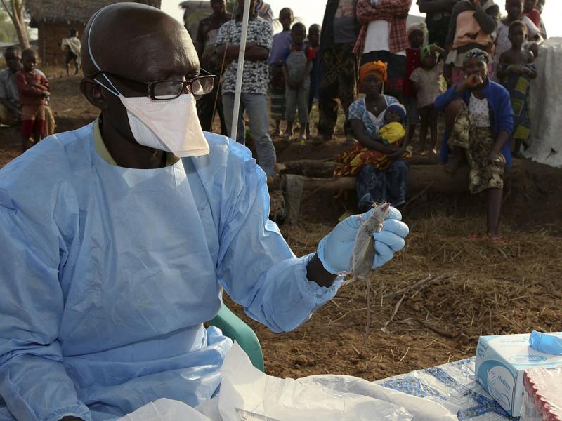 Nigeriyada 22 kishi bezgakdan halok bo'ldi