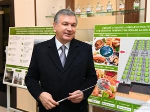 Шавкат Мирзиёев – Сирдарёда!