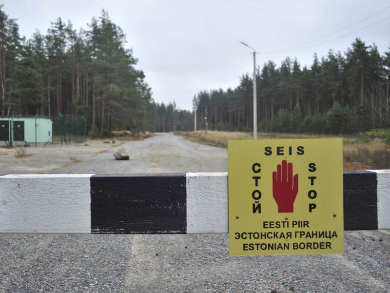 Россиялик тарихчи Эстониянинг ҳудудий иддаосига жавоб берди