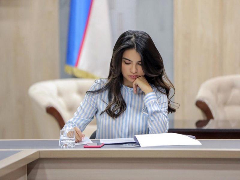 Саида Мирзиёева Президентнинг Бешта ташаббусни амалга ошириш бўйича стратегияни тақдим этди