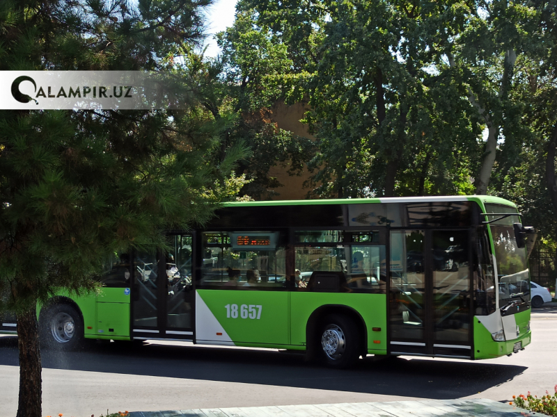 Тошкентда 11 та автобус йўналиши вақтинча ўзгартирилди