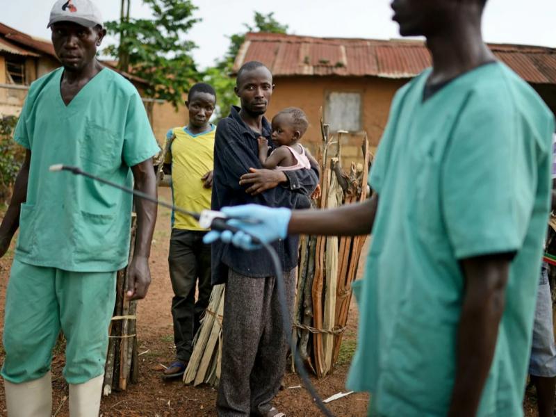 Ostonada yangi Ebola epidemiyasi. Kasallik haqida nimalar ma'lum?
