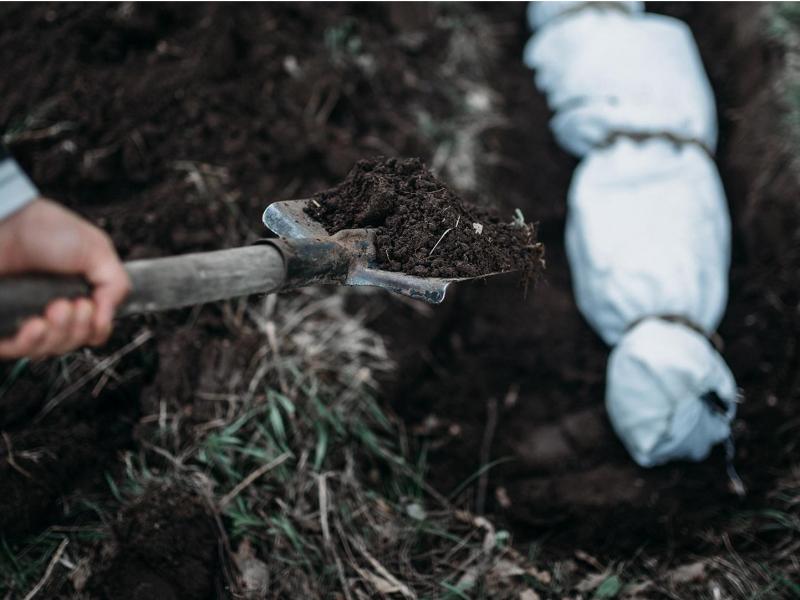 Тошкентда фарзандини ўлдириб, жасадни ертўлага кўмиб юборган отага суд ҳукми ўқилди