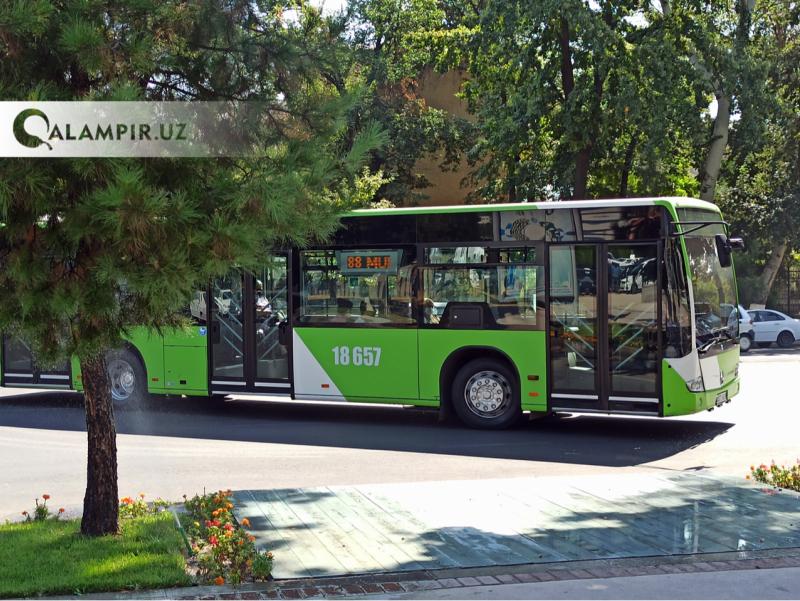Тошкентда имтиҳон кунлари автобуслар ҳаракати вақтли бошланади