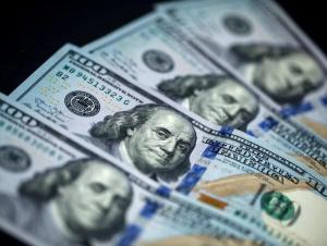 Департамент ноқонуний муомалада бўлган қанча доллар олиб қўйилганини очиқлади