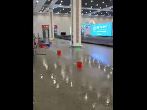 МАК: Тошкент халқаро аэропортининг томидан сув ўтмаган