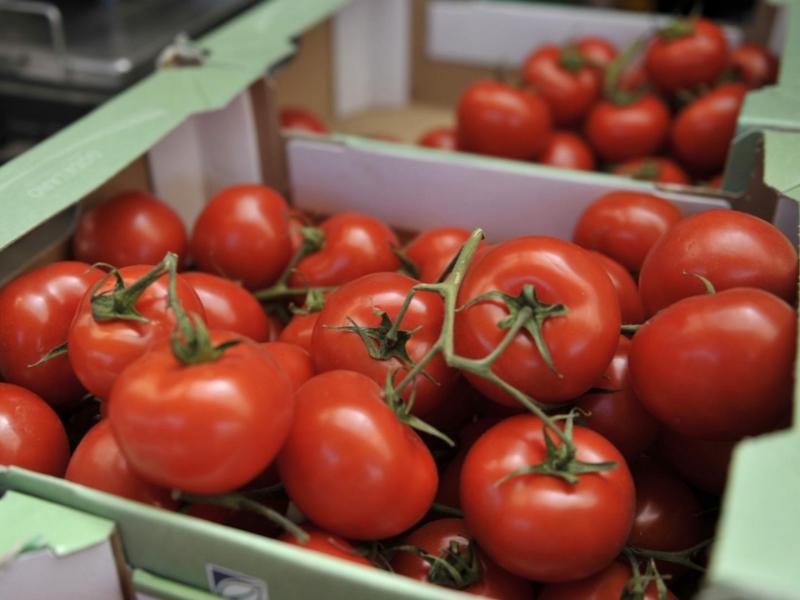 Россия Ўзбекистондан помидор ва қалампир олиб киришни тақиқлади