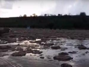 Видео: Қашқадарёда кучли сув тошқини кузатилди