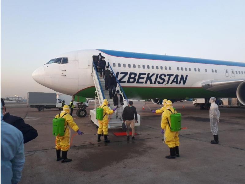 Сеулдан Тошкентга келган рейс йўловчилари вақтинча карантинга олинди